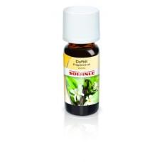 Perfume oil vanila