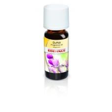 Perfume Oil Magnolia
